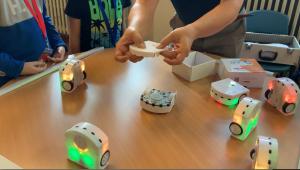 Api e Robot: Decisioni collettive – Scuola XXV Aprile Borgotrebbia / MEET&CODE